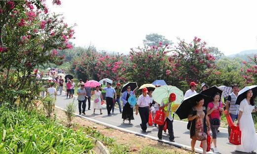 万紫千红植物园紫薇花节揽客3万