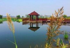 Beplay官网版凤凰湖湿地公园 原来Beplay官网版也可以这么美