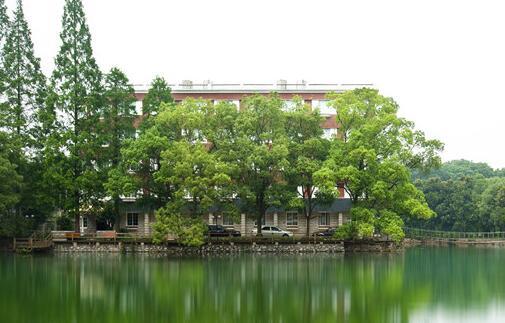 太子山树屋度假酒店