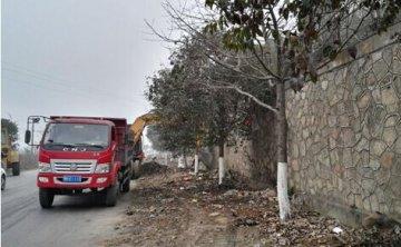 杨湾路社区对阳光大道进行卫生整治