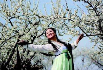 随州春色如此多娇 花海万分撩人的春光