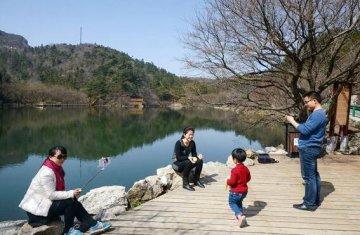 游客在大洪山核心景区樱花长廊游览