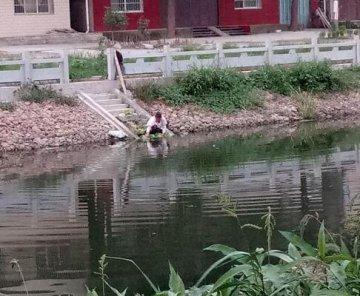 """湖北潜江县河:灌溉渠里""""水""""如墨"""