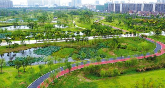 改善凤凰湖公园生态环境 提升城市品位
