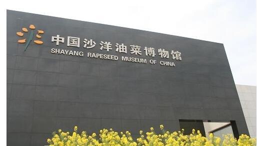 中国油菜博物馆
