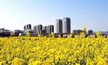 京山,城市建设让生活更美好