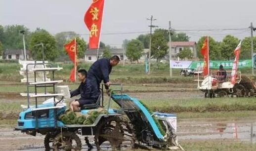 """""""一高三新""""谱写京山农业新篇"""
